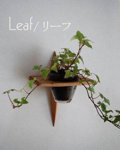 """画像1: 【インテリアグリーンウォールシェルフ/壁掛棚】 """"リーフ(leaf)"""" [ 壁面にグリーンを!]"""