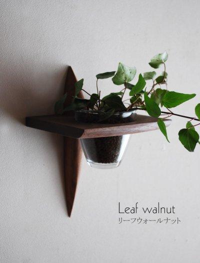 """画像1: 【インテリアグリーンウォールシェルフ/壁掛棚】 """"リーフ(leaf)""""ウォールナット[ 壁面にグリーンを!]"""