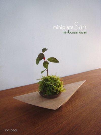 画像1: ミニ盆栽飾り台:miniplateSAN(ミニプレート・サン)
