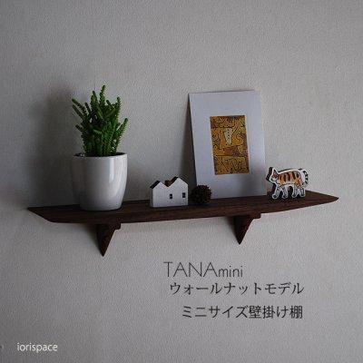 画像1: 【ウォールシェルフ/壁掛け棚】TANAminiウォールナット 壁面をおしゃれに飾るコンパクトな北欧風ウォールシェルフ シンプル ナチュラルな木製壁掛け飾り棚 トイレなどにお薦め